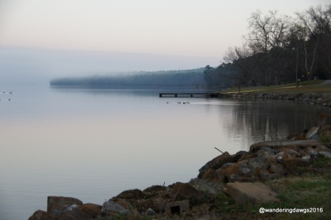Foggy morning on Lake Seminole at Eastbank