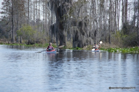 It was a beautiful day for kayaking