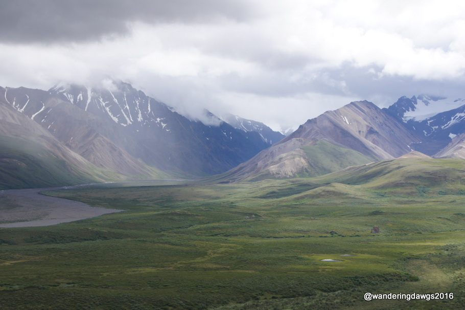 Polychrome Overlook, Denali National Park, Alaska