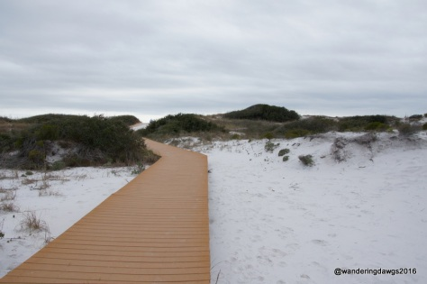 Boardwalk through pure white sand at Ft. Pickens