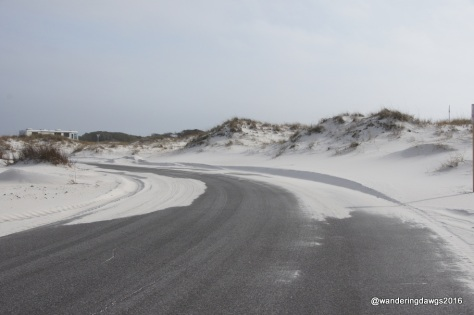 Sand covered parts of Fort Pickens Road as we exited the National Seashore