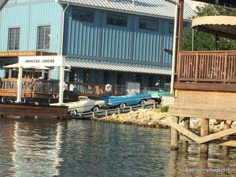 Rent an amphicar to tour the lake