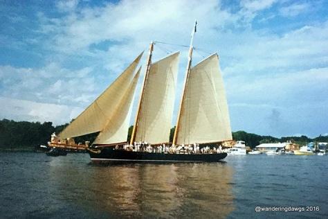 1996 Olympic Flame arrives in Savannah aboard Schooner America