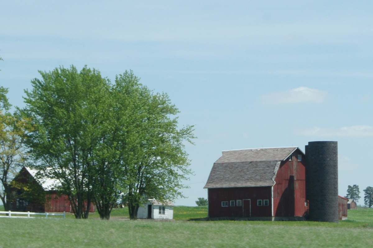 I love seeing the farms as we drive along