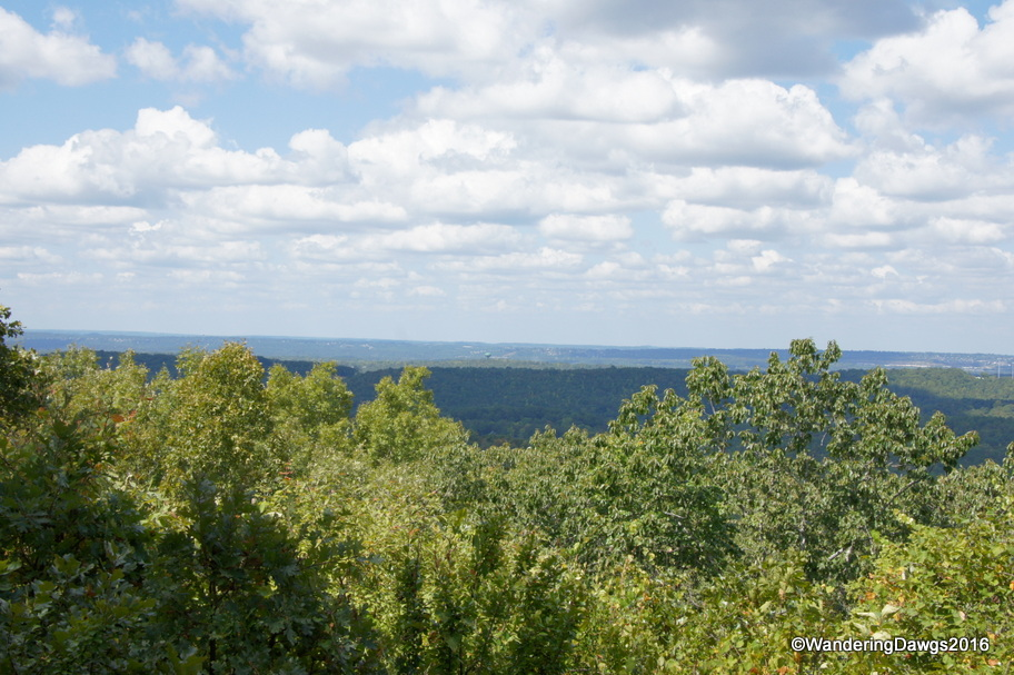 View from Peavine Falls Road Overlook