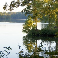 Lakefront Campground, Award Winning Barbeque, Scenic Drives, and Delta History