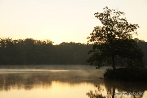 Early morning on Bear Creek Lake