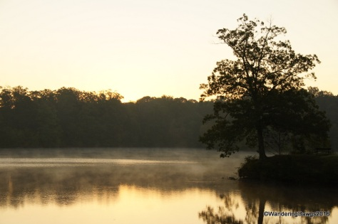 Early morning on Bear Creek Lake
