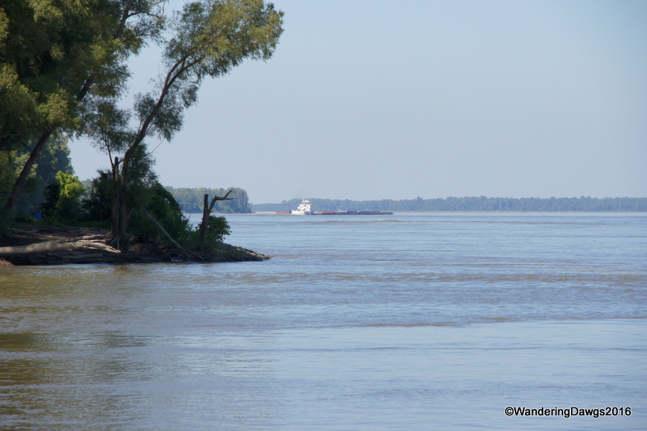 Confluence of St. Francis and Mississippi River