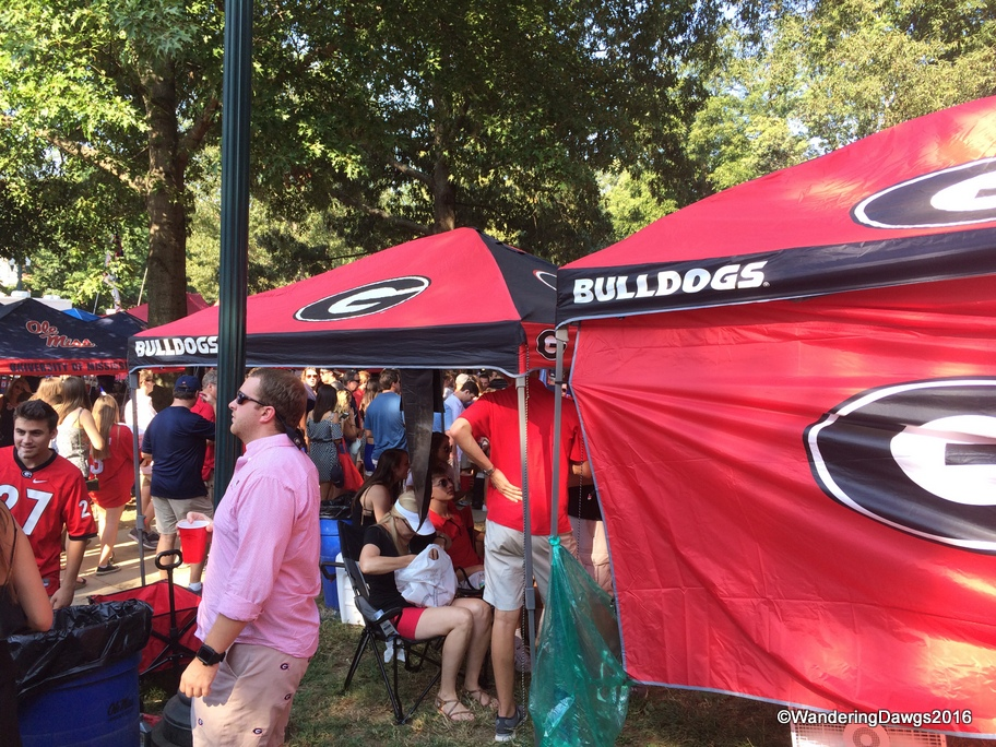 A few Georgia fans were tailgating in the Grove
