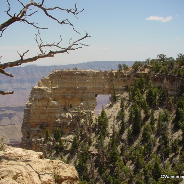 Grand Canyon North Rim Cape Royal Overlook