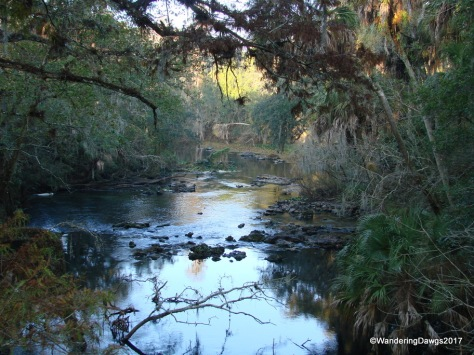 Hillsborough River