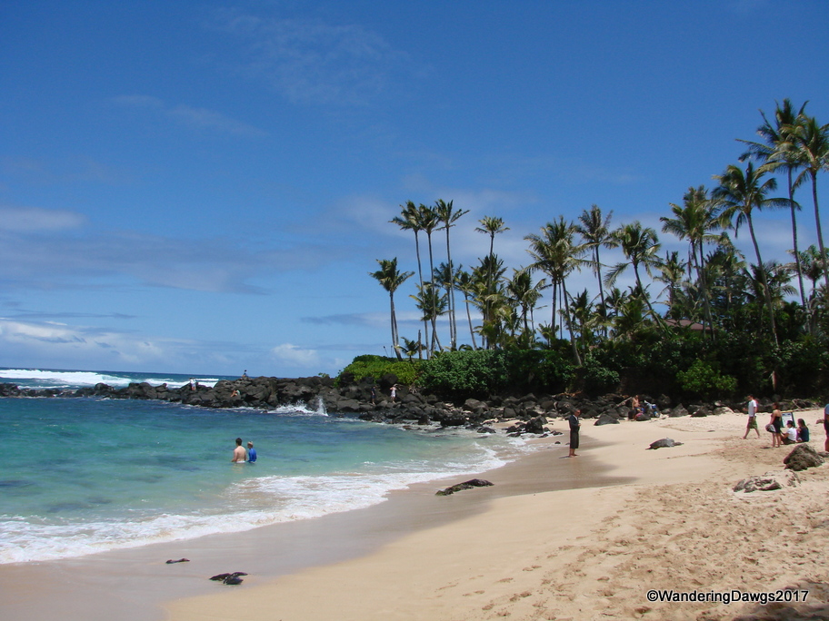 Turtle Cove on the north shore of Oahu