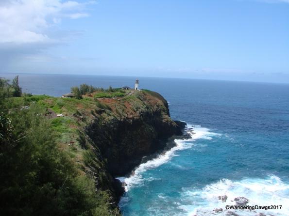 Kilauea Point Lighthouse on Kauai, HI