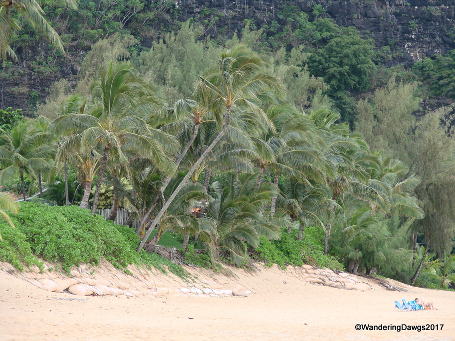 Beach on Kauai
