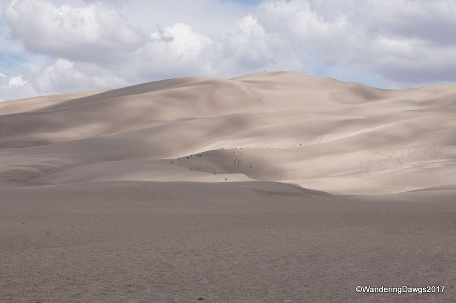 The people look tiny on the Great Sand Dunes