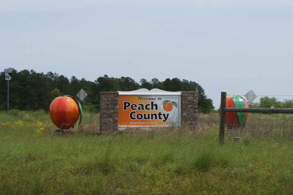 Peach County, Georgia