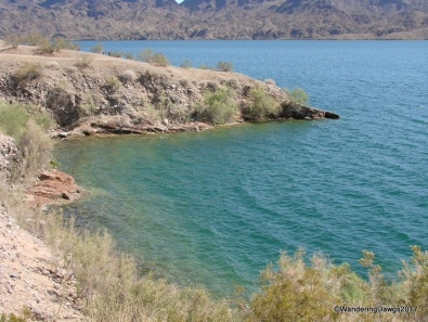 Lake Havasu in Cattail Cove State Park, Arizona