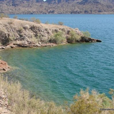Lake Havasu in Cattail Cove State Park, Arizona