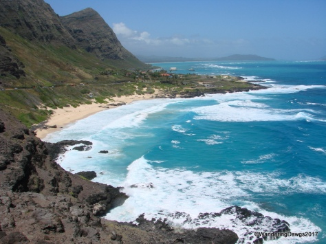 We could see surfers in the water from this overlook on Oahu