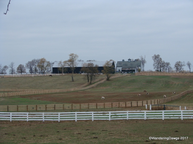 Wandering Around America One State at a Time – Kentucky