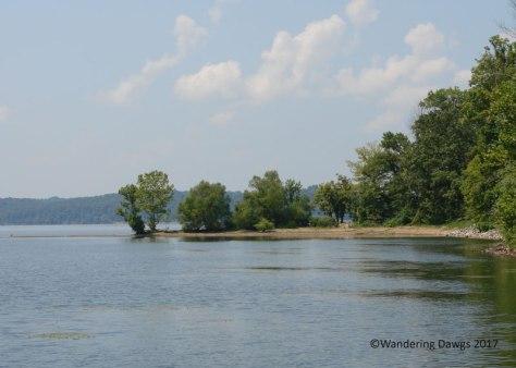 Rushing Bay on Kentucky Lake