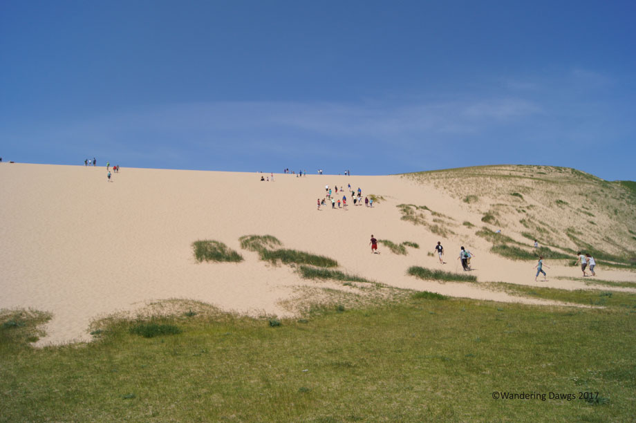 20100528Sleeping-Bear-Dunes-(24)