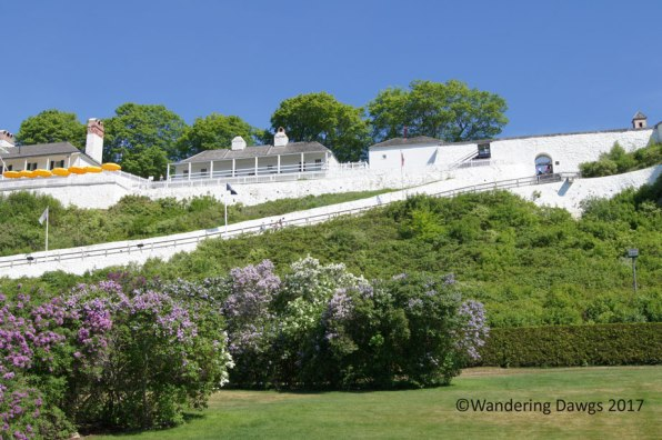 Lilacs were blooming at Fort Mackinac