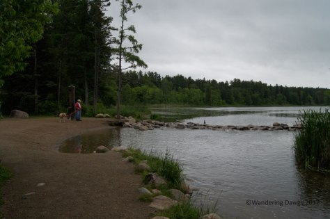 Mississippi River Headwaters in Itasca State Park