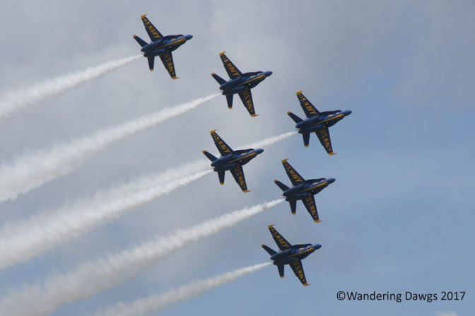 Look! Up in the Air! Navy Style