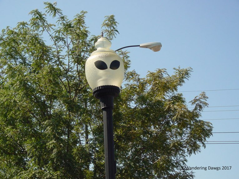 Street Lamp in Roswell, NM