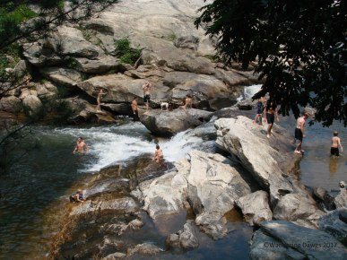 Bull Sluice on the Georgia/South Carolina line is a popular swimming hole