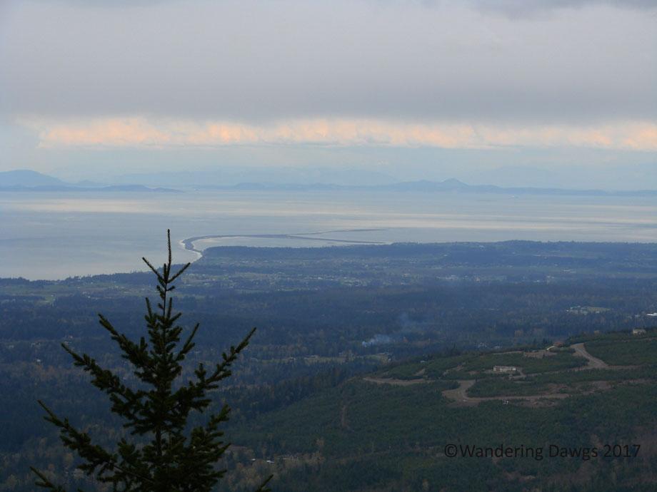 20070420Hurricane-Ridge-(51)