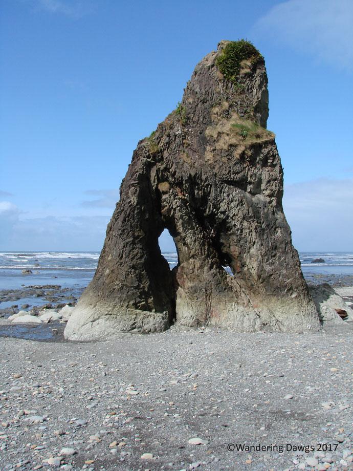 20070422bRuby-Beach-(3)