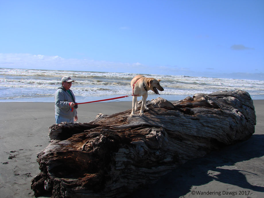 20070422dCape-Disappointment-(9)