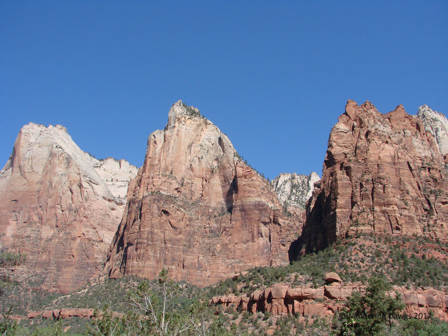20070530Zion-(34)Three-Patriarchs