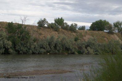 We camped beside the North Platte River in Casper