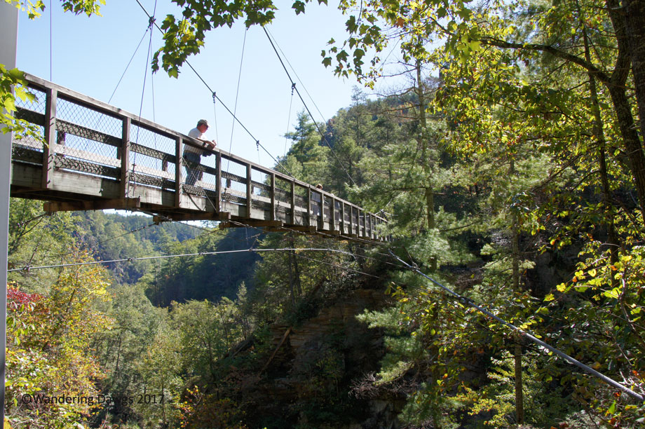 20171019Tallulah-Gorge-Suspension-Bridge-(45)