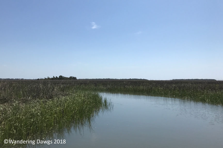 20170514Boat-Ride-(9)