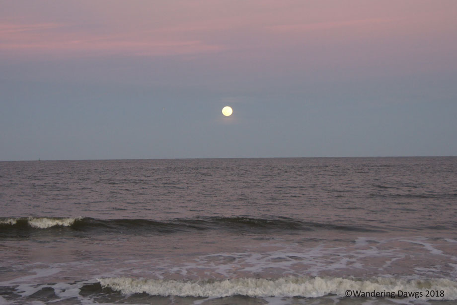 20170210Moon-Rise-at-North-Beach-(58)