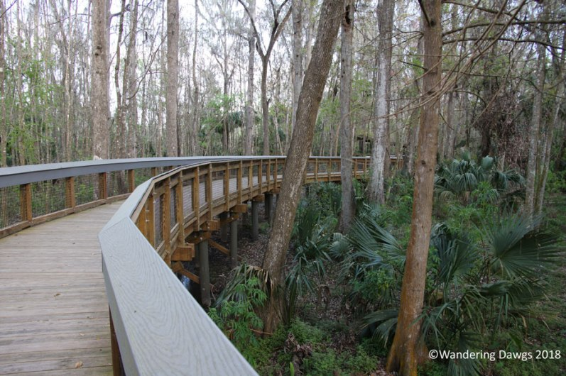 Boardwalk trail at Silver Spriings