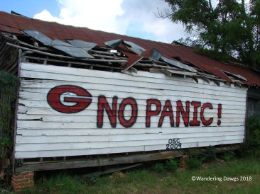 UGA Barn Sign 9-26-2009