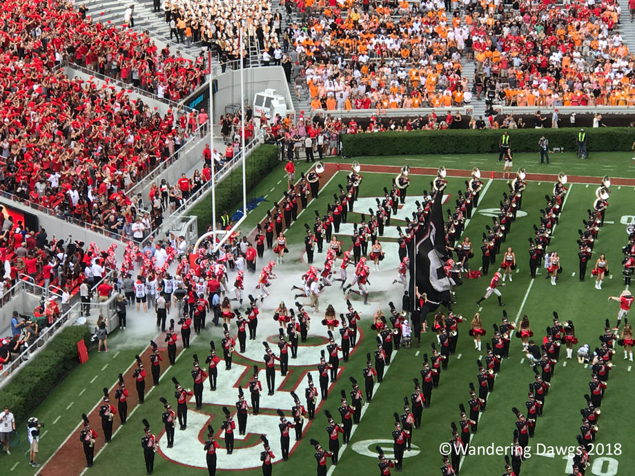 20180929-UGA-vs-Tennessee-38-12-(14)