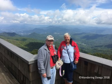 Wandering Dawgs at the top of Brasstown Bald