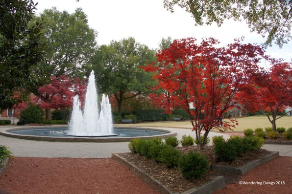 Vibrant autumn colors on the UGA campus