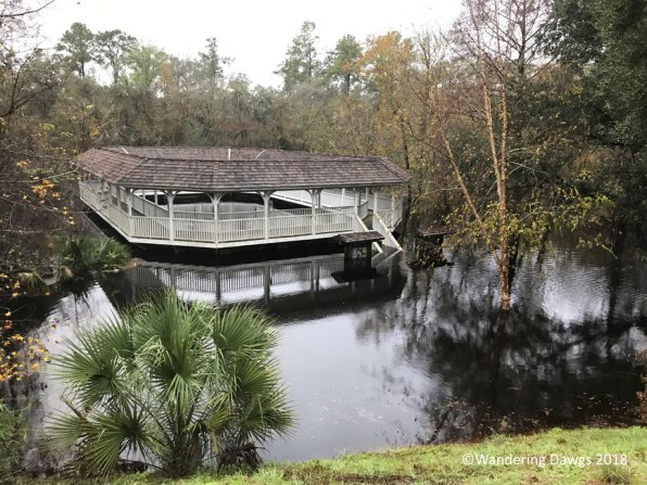 Suwanee River at the Spring House