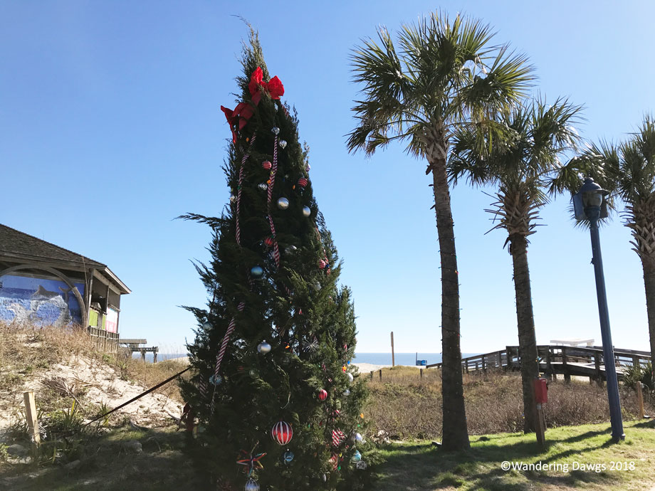 20181223-Tybee-Christmas-Tree-(6)