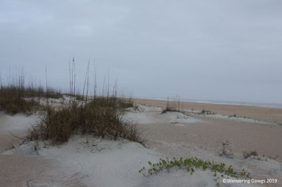Beach at Anastasia State Park