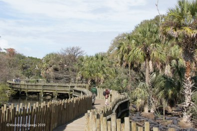 Boardwalk through the Saint Augustine Alligator Farm Native Swam and Rookery