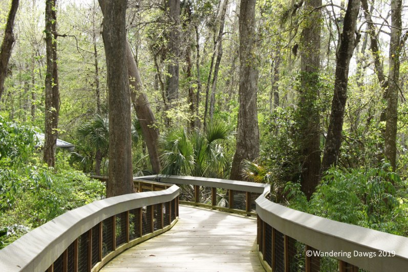 Ross Allen Boardwalk Trail, Silver Springs State Park